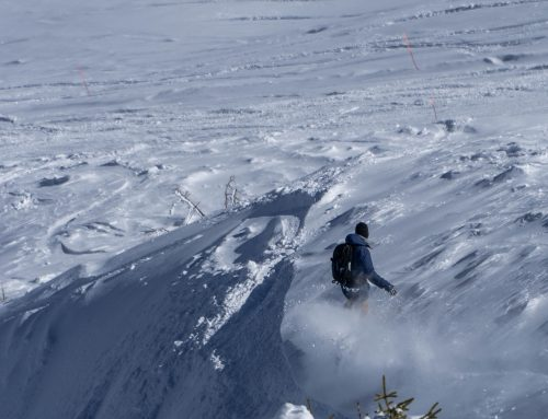 The Vivid Snowboarding middle of Winter Freeride Camp